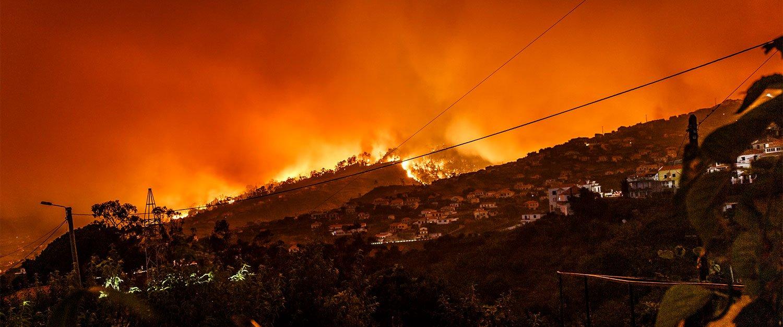 Natural Disasters Insurance